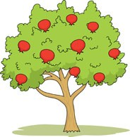 353/x_095101_Apple Tree.jpg